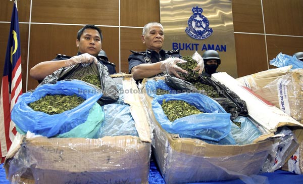 Police detect organic drug 'Khat' being smuggled to Malaysia