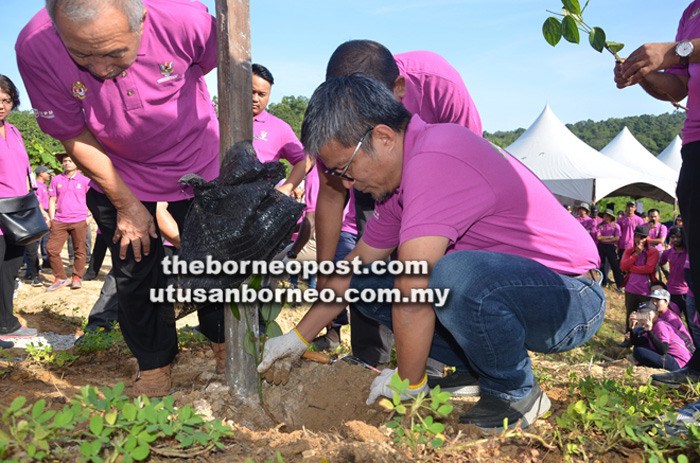 R&D to further commercialise pepper | Borneo Post Online