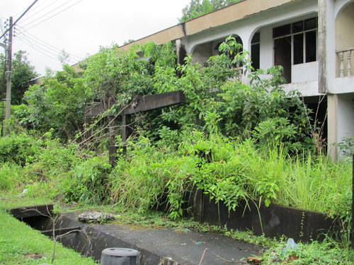 EYESORE: Abandoned houses are seen in Kuching. — File photo