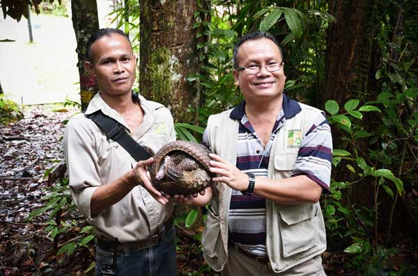 THIS IS PROTECTED: Braken (right) holding a pangolin together with a field staff.