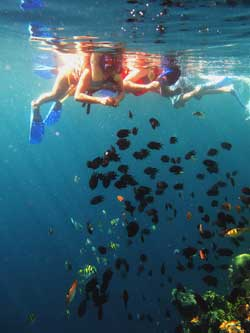 Tourists enjoying the underwater view and rich marine life as they snorkle at Banda Islands. — Photo by Toar Pantouw/Coral Triangle Centre
