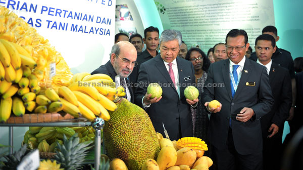 Ahmad Zahid (second left) showing some of the local fruits to Food and Agriculture Organisation (FAO) director general Dr Jose Graziano da Silva (left) during the event, as Agriculture and Agro-based Industry Minister Datuk Seri Ahmad Shabery Cheek (front right) looks on. — Bernama photo