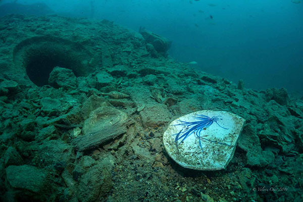 A broken ceramic plate and other contents once hidden in the belly of the Katori Maru lies on the seabed together with other debris from the shipwreck, which has been almost completely de-stroyed by rogue metal salvagers. — Photos by Valerie Chai