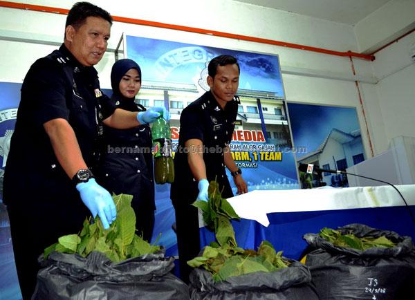 HASIL RAMPASAN: A. Asmadi (kiri) menunjukkan daun dan air ketum yang dirampas daripada seorang lelaki dalam satu sekatan jalan raya, pada sidang media, di Alor Gajah, semalam. — Gambar Bernama