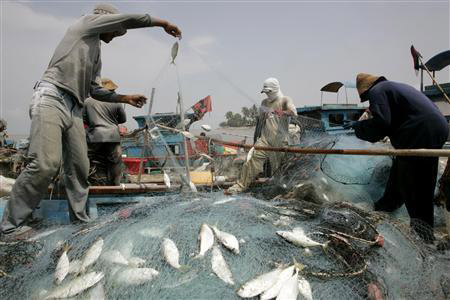 Borneo Aqua says it is fully committed on its aquaculture business despite its proposed plans to diversify into the mining business. Borneo Aqua is one of the leading player in the aquaculture industry in Malaysia as it is one of the biggest exporter of fin fish from Sabah, targeting the key markets in the southern China region, such as Hong Kong, Shenzhen and Guangzhou. — Reuters photo