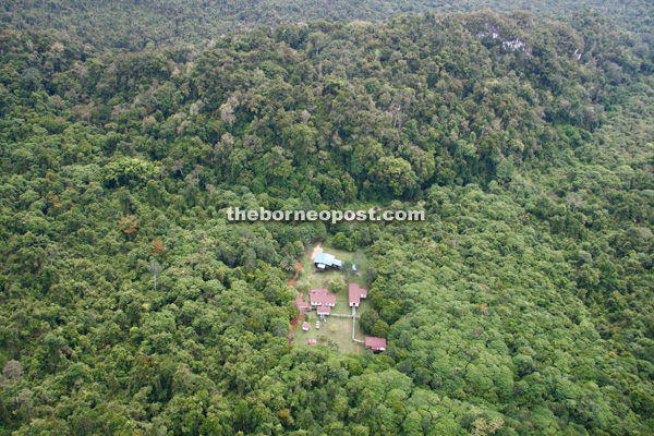 Aerial view of Bukit Sarang:  The building is the research station. The mountain in the background holds caves where ancient human skeletons have been found. Signs of early civilisation are also visible in a cave with drawings of human figures.