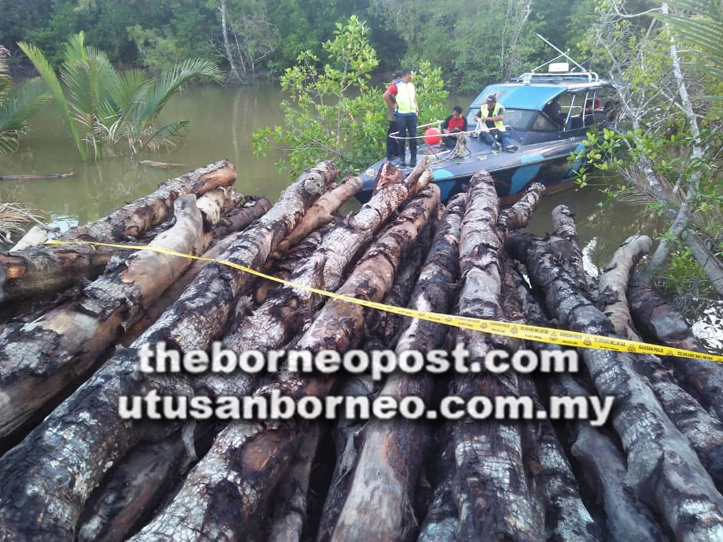 1,100 illegally felled mangrove logs seized in joint ops